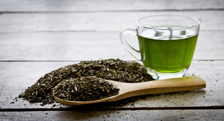 Green tea weight loss - article head image
