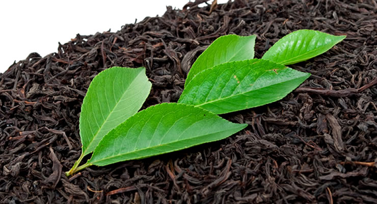 Benefits Of Black Tea - article head image