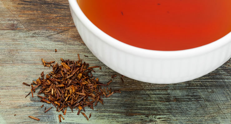 Rooibos Tea Benefits - article head image