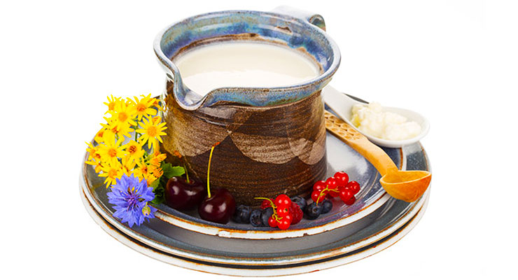 Kefir health benefits - article head image