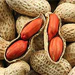 10 Foods High In Protein - peanuts image