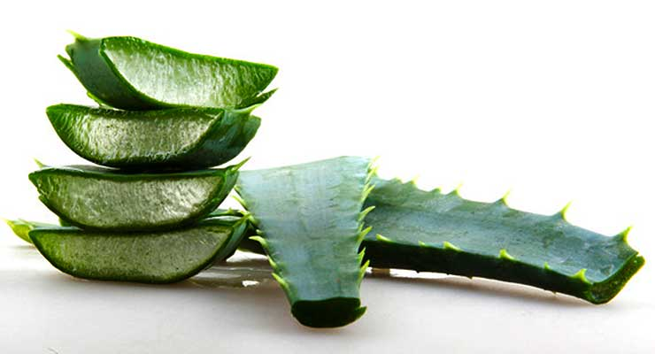 Benefits of aloe vera juice - article head image