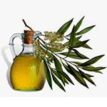 Hot oil treatment against dandruff - tea tree oil image