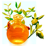 Hot oil treatment against dandruff - jojoba oil image